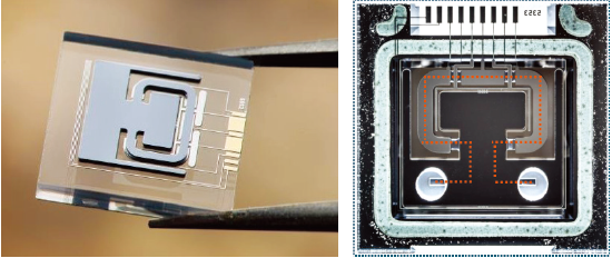MEMS黏密度传感器芯片,其长宽小于10mm x 10mm
